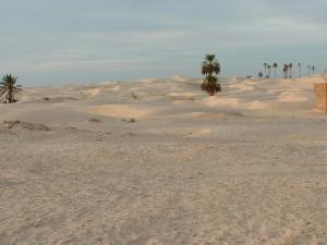 Tunisia 03-2005-n0116