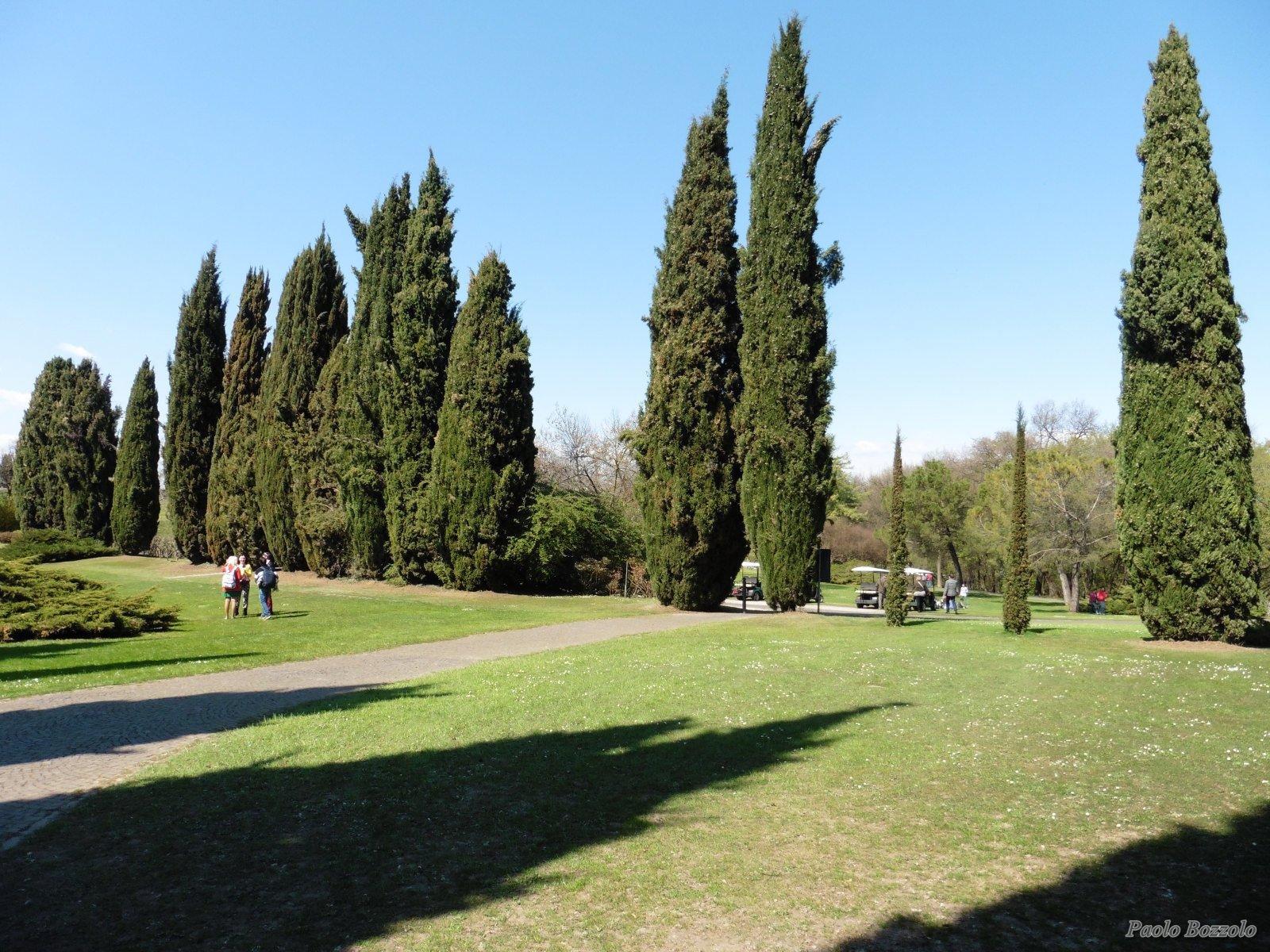 Il parco giardino sigurt a valeggio sul mincio vr - Parco giardino sigurta valeggio sul mincio vr ...